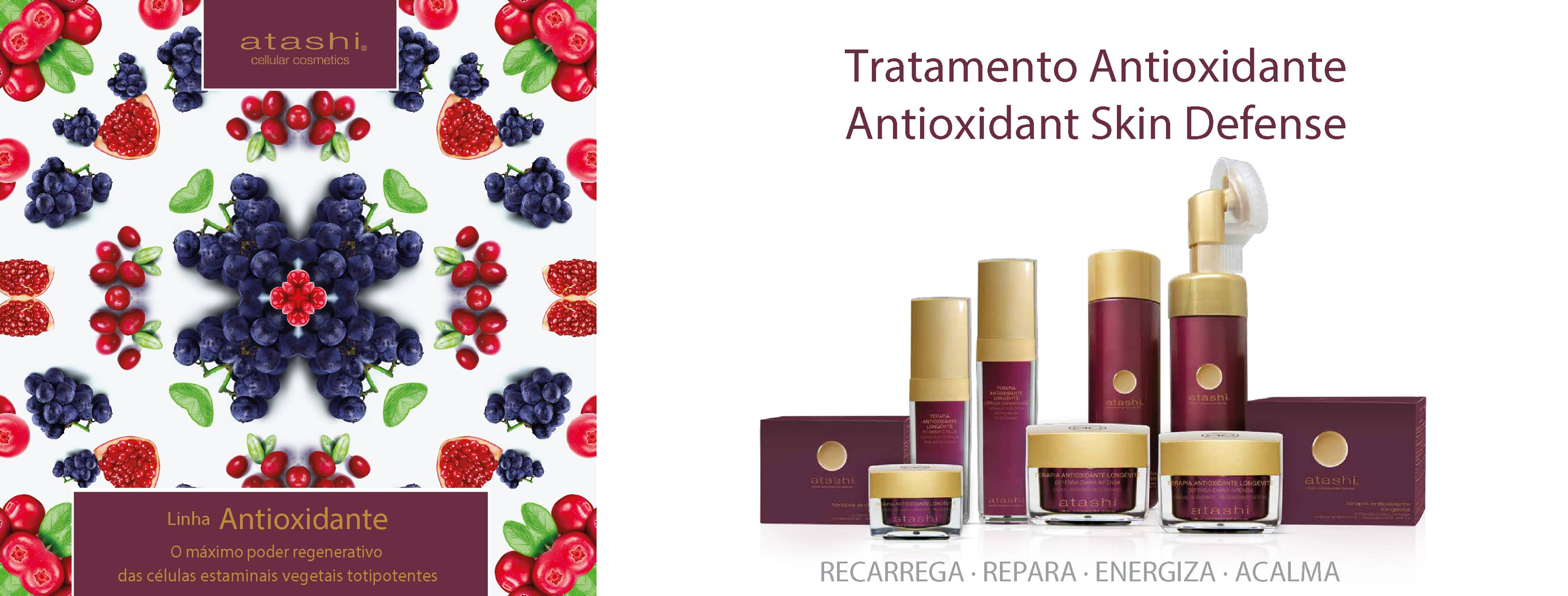 ATASHI ANTIOX SORO VITAMINA C PLUS 30ML